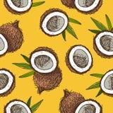 Безшовная картина вектора кокосов Стоковые Фото