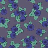 Безшовная картина вектора с голубиками на темной предпосылке Стоковая Фотография