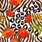 Безшовная картина вектора с животными печатями Стоковые Фотографии RF