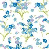 Безшовная картина вектора - цветки незабудки Стоковые Изображения RF