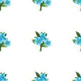 Безшовная картина голубых букетов незабудки Стоковое фото RF