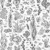 Безшовная картина лета морской жизни Стоковое фото RF