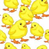 Безшовная картина желтый младенец цыпленка также вектор иллюстрации притяжки corel Стоковые Изображения RF