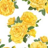 Безшовная картина желтых роз с бутоном и листьями на белой предпосылке Стоковое Изображение