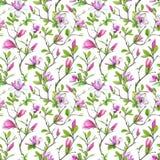 Безшовная картина, зацветая магнолия и ветви weave с зеленой листвой Стоковые Изображения