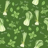Безшовная картина зеленых овощей с литерностью: лук, петрушка, базилик и bok choy, картина акварели иллюстрация штока