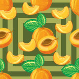 Безшовная картина зрелого абрикоса Стоковое Фото