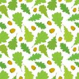 Безшовная картина листьев и жолудей дуба в цвете на белой предпосылке иллюстрация штока