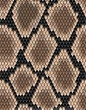 Безшовная картина кожи змейки Стоковые Фотографии RF