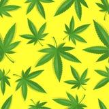 Безшовная картина конопли марихуаны Стоковая Фотография RF