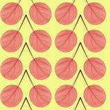 Безшовная картина красных листьев стоковые изображения