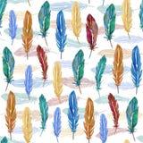 Безшовная картина красочных пер акварели Нарисованная рука иллюстрация штока