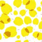 Безшовная картина листьев осени на белизне Стоковое фото RF