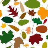 Безшовная картина листьев осени Стоковая Фотография