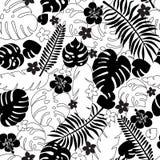Безшовная картина листьев силуэта тропических стоковые фото