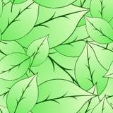 Безшовная картина листьев стоковое изображение rf
