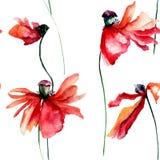 Безшовная картина маков цветет с падением лепестка  Стоковые Изображения RF