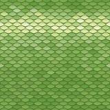 Безшовная картина масштаба Зеленая текстура squama Стоковое Изображение RF
