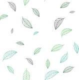 Безшовная картина на теме листьев Стоковая Фотография