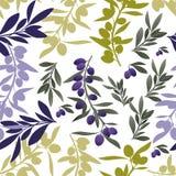 Безшовная картина оливковых веток Среднеземноморской символ культуры Стоковая Фотография