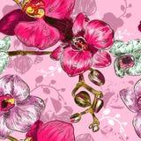 Безшовная картина орхидеи иллюстрация вектора