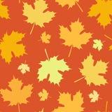 Безшовная картина осени с листьями падает иллюстрация штока