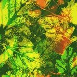 Безшовная картина отпечатков листьев Стоковые Фото