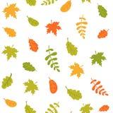 Безшовная картина падая листьев осени на белой предпосылке Красочные листья различных деревьев r иллюстрация штока