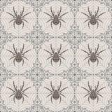 Безшовная картина паука Стоковые Фото