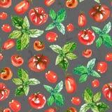 Безшовная картина поверхности акварели от свежих зрелых томатов и зеленый базилик на темном - серый камень как предпосылка свеже иллюстрация штока