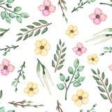 Безшовная картина полевых цветков и листьев акварели Стоковые Изображения