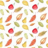 Безшовная картина при листья осени рисуя акварелью, рукой нарисованные элементы Стоковое Изображение