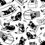 Безшовная картина при милый кот моя, протягивающ, играть, спать Смешное домашнее животное шаржа в различной бесплатная иллюстрация