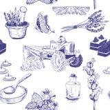 Безшовная картина при установленные цветки лаванды Стоковые Изображения