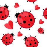 Безшовная картина при ladybug изолированный на белизне Вектор EPS 10 Стоковая Фотография RF