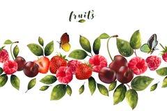 Безшовная картина реалистических ягод Стоковое Изображение