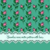 Безшовная картина роз с предпосылкой зеленого цвета шнурка Стоковые Изображения