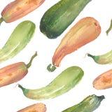 Безшовная картина сквоша акварели тыквы с естественными иллюстрациями на бумаге Стоковое Изображение RF