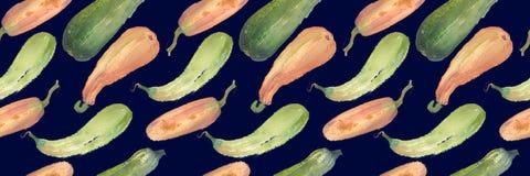 Безшовная картина сквоша акварели тыквы с естественными иллюстрациями на бумаге Стоковые Фото