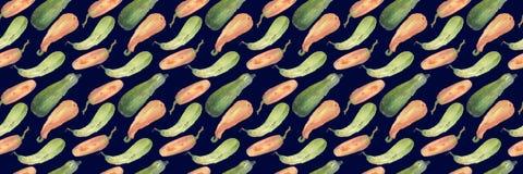 Безшовная картина сквоша акварели тыквы с естественными иллюстрациями на бумаге Стоковые Фотографии RF