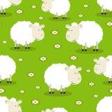 Безшовная картина смешных овец Стоковое Изображение
