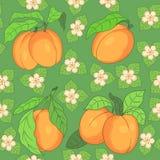 Безшовная картина с абрикосами Стоковые Фото
