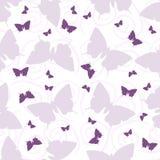 Безшовная картина с бабочками и скручиваемостями Стоковая Фотография