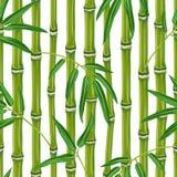 Безшовная картина с бамбуковыми заводами и листьями Стоковое фото RF