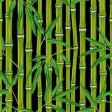 Безшовная картина с бамбуковыми заводами и листьями Стоковые Изображения