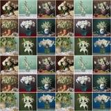 Безшовная картина с белыми цветками в вазе поединка стоковые изображения