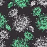 Безшовная картина с большими цветками на темной предпосылке Стоковое Изображение
