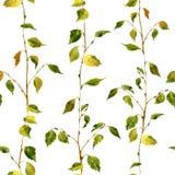 Безшовная картина с ветвями березы Стоковое Изображение