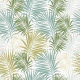 Безшовная картина с ветвями ладони различных зеленых подкрасок Стоковые Изображения RF