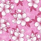 Безшовная картина с вишневым цветом Стоковое фото RF